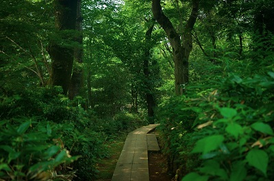 大自然は神様の愛を物語る。