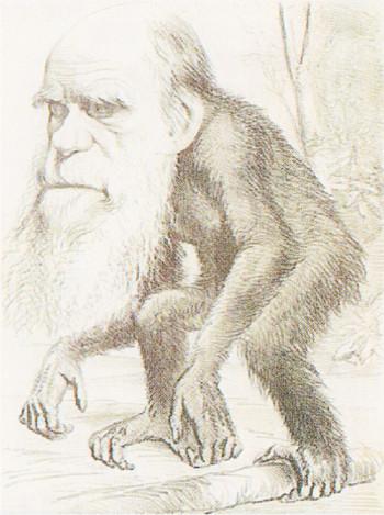 進化論が怪しい理由1
